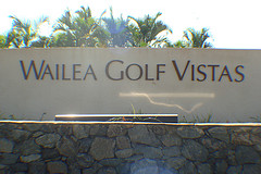 Wailea Maui homes for sale