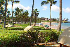 Wailea BEachfront Homes